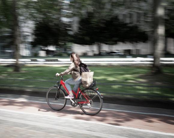 Grünwegvernetzung im Leipziger Osten