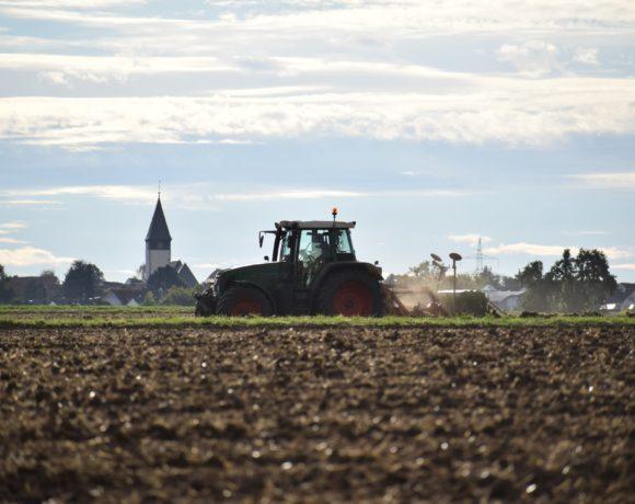 Ex-ante-Evaluierung der EU-Strukturfondsförderung in Sachsen