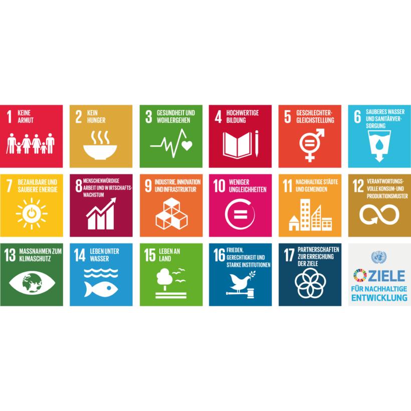 Synopse zur Verankerung der SDGs im INSEK der Stadt Leipzig