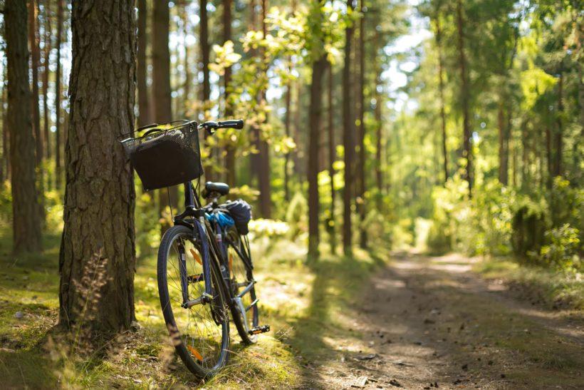 Mobilität im ländlichen Sachsen